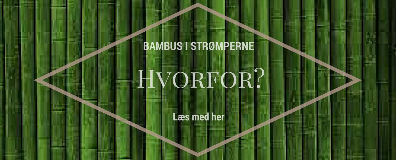 Information om bambus strømper - hvorfor bambusstrømper?